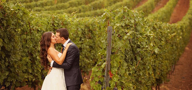 Newlyweds kiss in front of vinyard